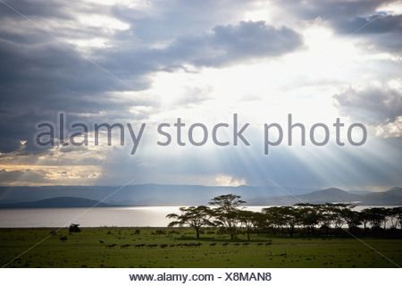 Sunlight Shines Down Through The Clouds Onto A Lake; Kenya - Stock Photo