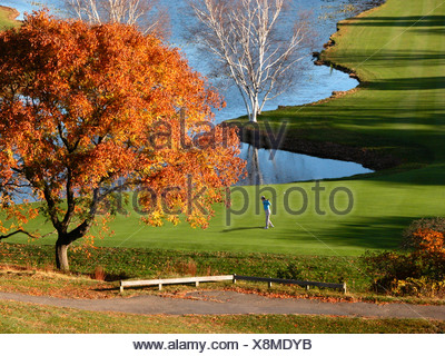 single golfer swinging golf club on green with strong afternoon light and autumn fall trees and lake in background - Stock Photo