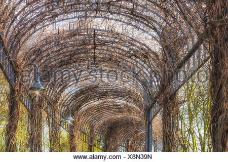 landscaping covered porch. - Stock Photo