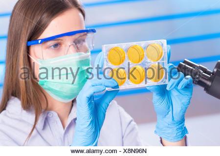 Female scientist wearing mask examining samples. - Stock Photo