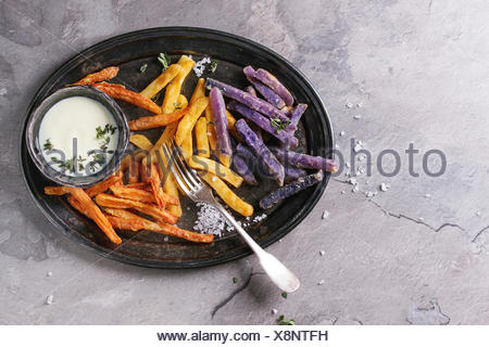 Variety of french fries traditional potatoes, purple potato, carrot served with white cheese sauce, salt, thyme on vintage tray over gray texture back - Stock Photo