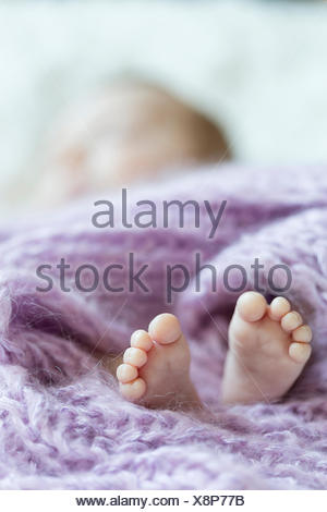 Feet of newborn baby girl - Stock Photo