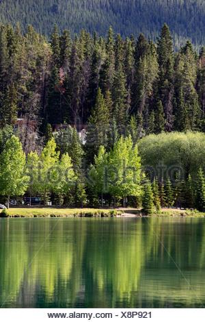 Canada, Alberta, Banff National Park, Bow River Valley - Stock Photo