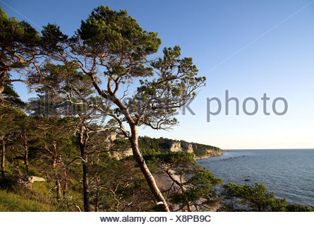 Fishing huts and boat slips on Sigsarve Beach, Gotland, Sweden