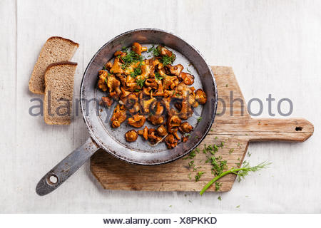 Roasted wild forest  mushrooms in pan on white textured background - Stock Photo