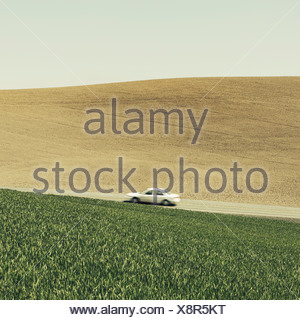 A car driving on am uphill slope surrounded by farmland and lush green fields of wheat near Pullman Washington - Stock Photo
