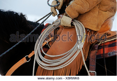 On a horse with saddle and lasso - Stock Photo
