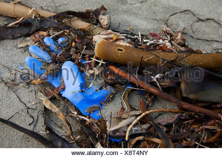 A Rubber Glove And Debris That Has Washed Up On Ucluth Beach In The Wya Point Campground; British Columbia, Canada - Stock Photo