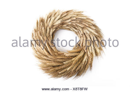 Autumn wreath made from rye (Secale cereale) - Stock Photo