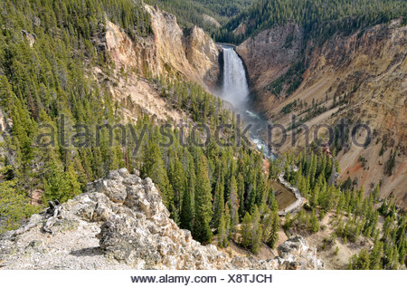Lower Falls with the Red Rock Trail, Grand Canyon of the Yellowstone River, view from North Rim, Yellowstone National Park - Stock Photo