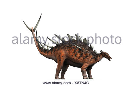 kentrosaurus - Stock Photo