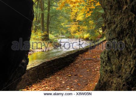 Selketal-Stieg im herbstlichen Gewand - Stock Photo
