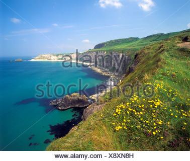 Coastline at Carrick a Rede, County Antrim, Northern Ireland, United Kingdom, Europe - Stock Photo