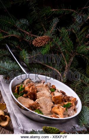 Pork tenderloin with Chanterelle sauce - Stock Photo
