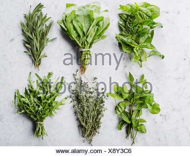 Six bunches of herbs on marble countertop: basil, spinach, rosemary, mint, thyme, rucola. From above shot - Stock Photo