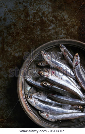 Lot of raw fresh anchovies fishes on crushed ice in vintage plate over old dark metal background. Top view. Sea food background theme. - Stock Photo