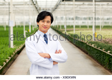 Scientist standing in front of rows of plants growing in greenhouse, arms folded - Stock Photo