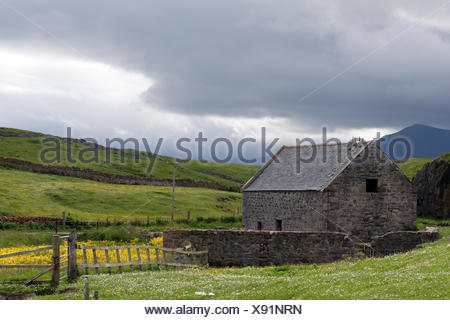 hill stone wood field flower flowers plant wall anciently fence fields meadows - Stock Photo