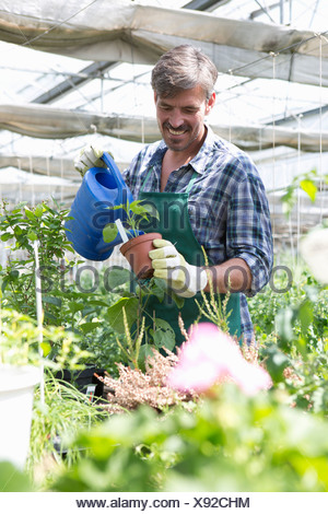 Organic farmer watering young plants - Stock Photo