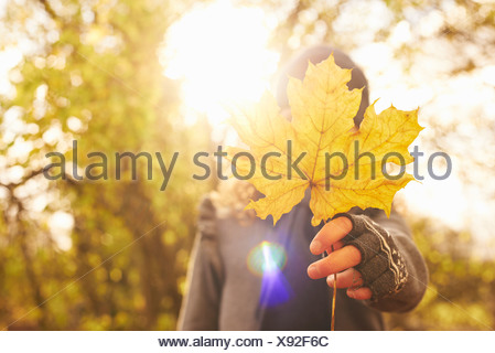 Boy holding autumn leaf outdoors - Stock Photo