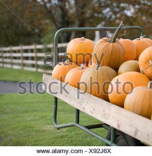 Pumpkins piled on a cart - Stock Photo