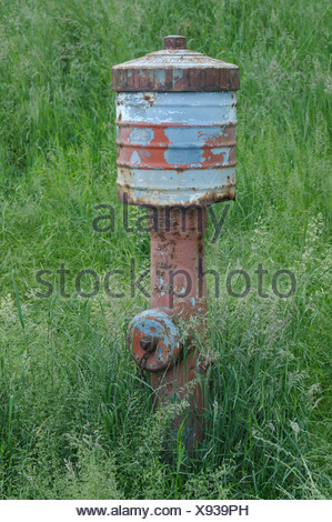 Old weathered hydrant in a meadow of flowering grass - Stock Photo