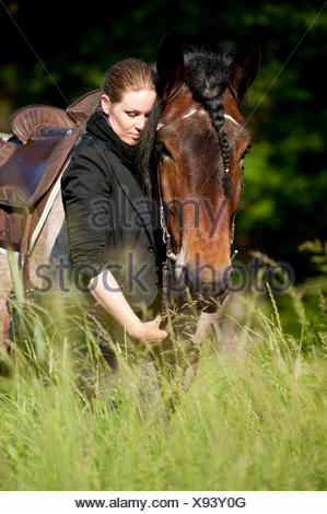 Woman with a Belgian Draft Horse in a meadow - Stock Photo