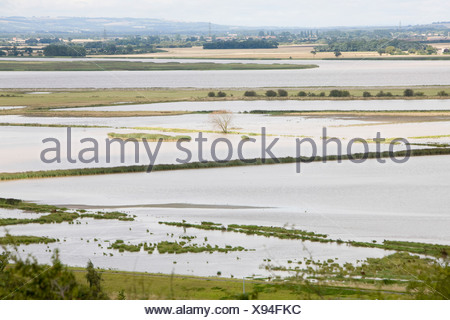 Managed retreat at Alkborough on the Humber Estuary to take the pressure off the coast from sea level rise - Stock Photo