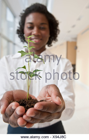 Jamaican businesswoman holding a plant - Stock Photo