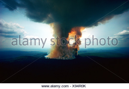 Towering rain forest fire at Jarí Forestal, Pará, Brazil. - Stock Photo