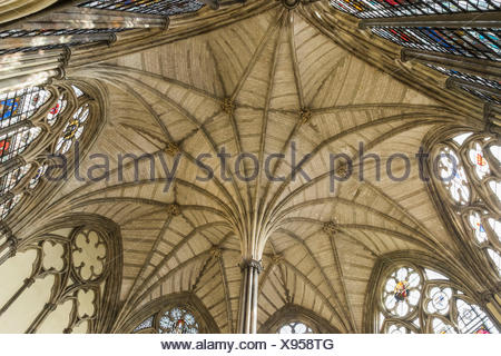England, London, Westminster Abbey, The Chapter House Ceiling - Stock Photo