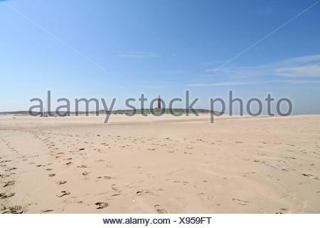 texel beach - Stock Photo