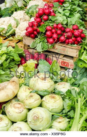 Freshly harvested kohlrabi, radishes and cauliflower at the weekly farmers' market in Freiburg im Breisgau, Baden-Wuerttemberg - Stock Photo