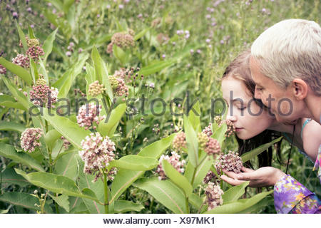 A mature woman and a young girl in a wildflower meadow looking closely at the flowers. - Stock Photo