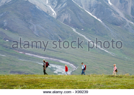 Female US National Park Interpretive Ranger leads group on a *discovery hike* in the Eielson area Denali National Park Alaska - Stock Photo