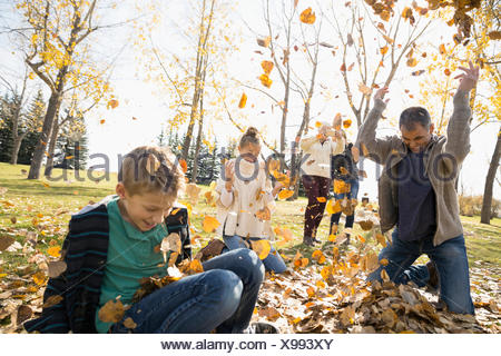Family playing throwing autumn leaves in sunny park - Stock Photo