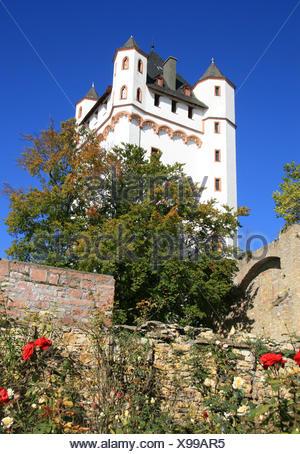 electoral castle in eltville - Stock Photo