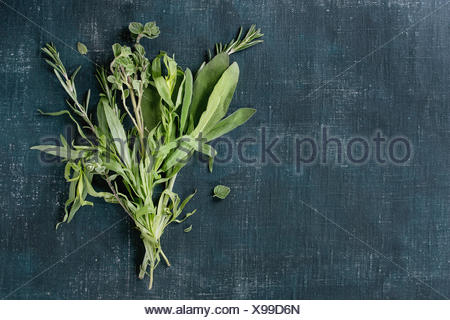Bundle of fresh Italian herbs rosemary, oregano and sage over dark blue shabby background. Top view with copy space - Stock Photo