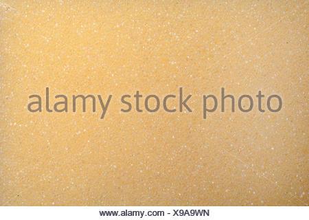 closeup of yellow spunge - Stock Photo