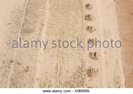Drought hit fields in Shanxi province in northern China - Stock Photo
