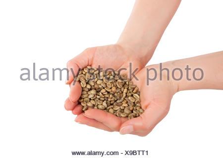 Mushroom diet pills japan picture 4