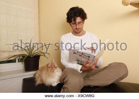 Sibirische Katze / Siberian Cat - Stock Photo