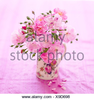 A bunch of pink roses in a jug - Stock Photo