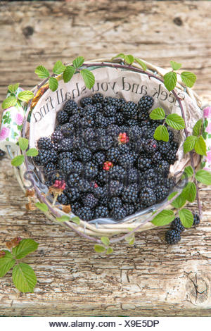 seek  and you shall find, blackberries in paper lined basket against rustic wood - Stock Photo