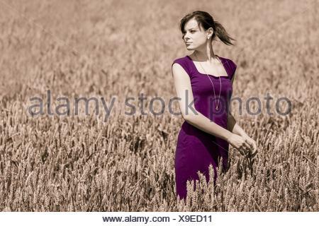 autumn beauty in cornfield with purple dress - Stock Photo