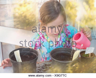 Girl watering seedlings in flowerpots with tiny pink watering can - Stock Photo