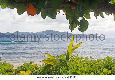 view over the sea onto the island praslin , Seychelles, La Digue - Stock Photo