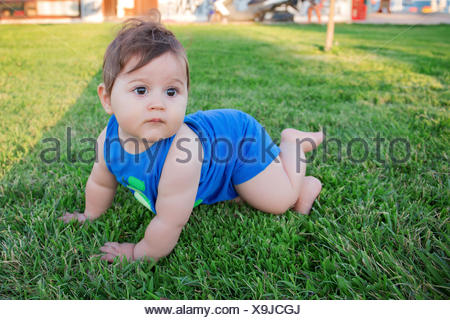 Baby boy crawling on the grass - Stock Photo
