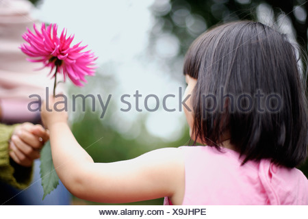 Girl receiving flower - Stock Photo