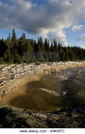 Driftwood littered sand beaches and boreal forest along the shores of Lake Superior in Pukaskwa National Park, Ontario, Canada - Stock Photo
